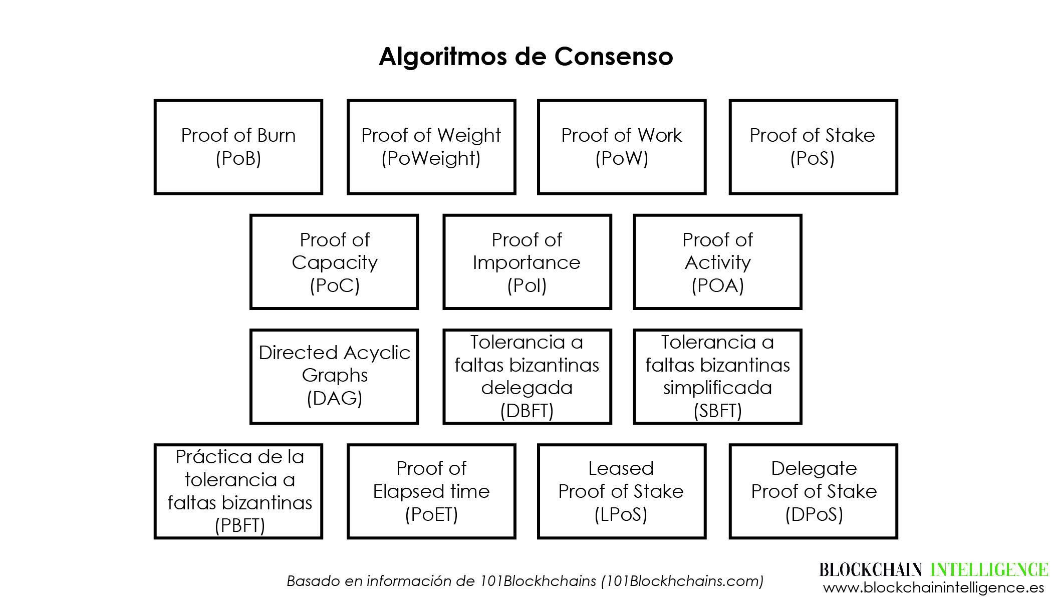 algoritmos consenso logo largo-01
